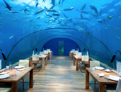 Underwater Living – A New Experience With Glass At It's Heart